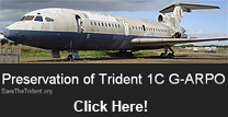 Save the Trident Group logo